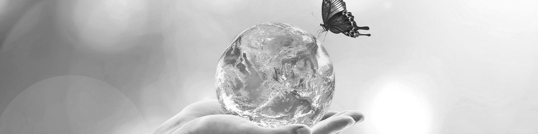 Inscrivez-vous! – Webinaire – Nouvelles normes ISO sur la biodiversité